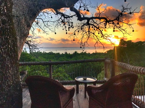 stay accommodation in a treehouse lodge on a remote island holiday in Tanzania East Africa