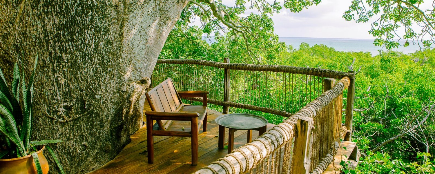 accommodation stay in a treehouse lodge hotel on a tropical island off the coast of tanzania