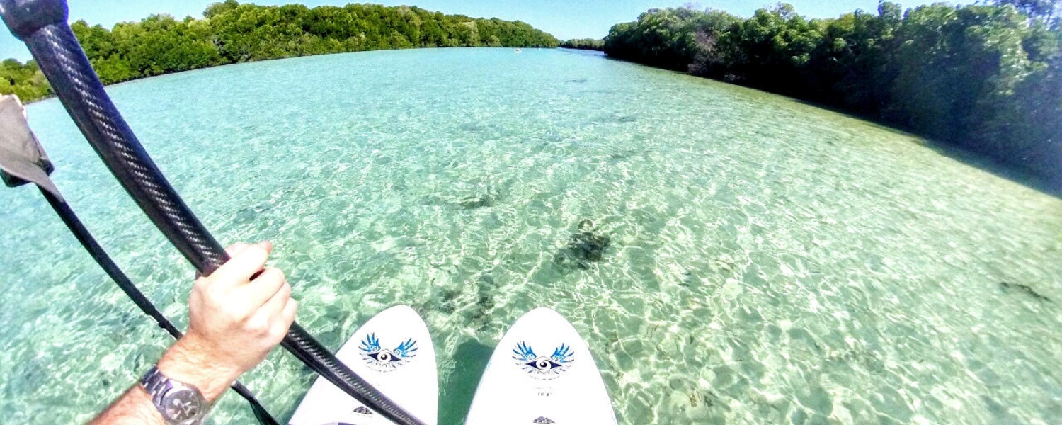 supping and paddle boarding on an island