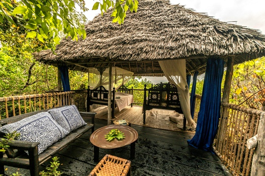family package stay accommodation in a treehouse lodge on tropical chole island in tanzania east africa